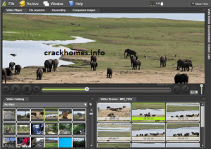 Fast Video Cataloger 6.42.0.0 Crack
